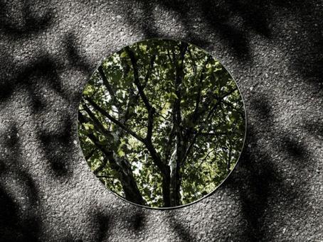 Sebastien Magnani - Reflections