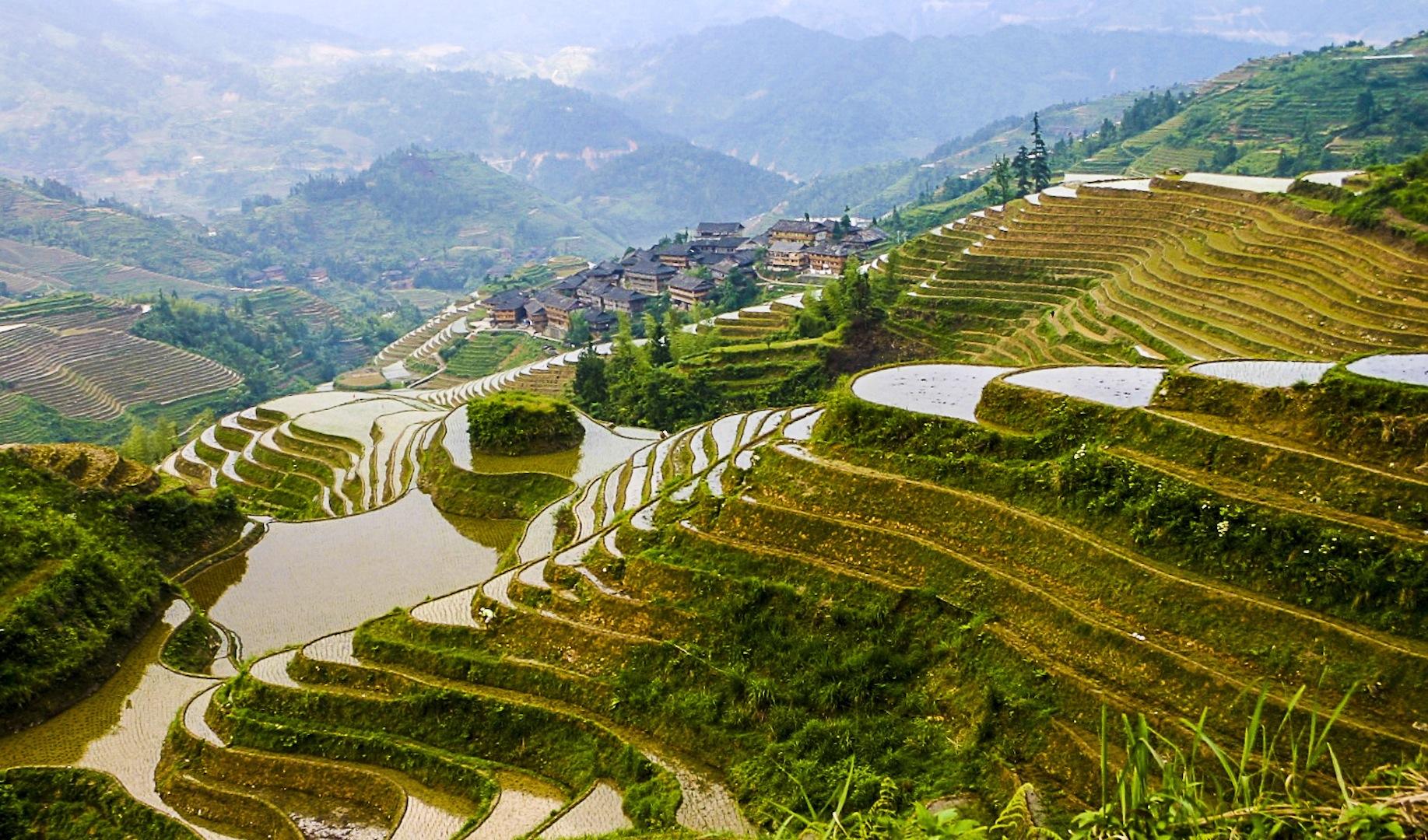 CPJ 87_Longshen, Chine