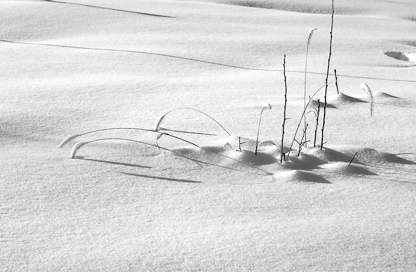 CPJ 91_Neige...neige