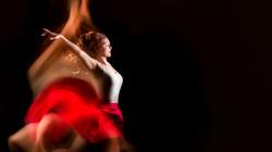 No 2 CPJ_79_Gracieuse danseuse