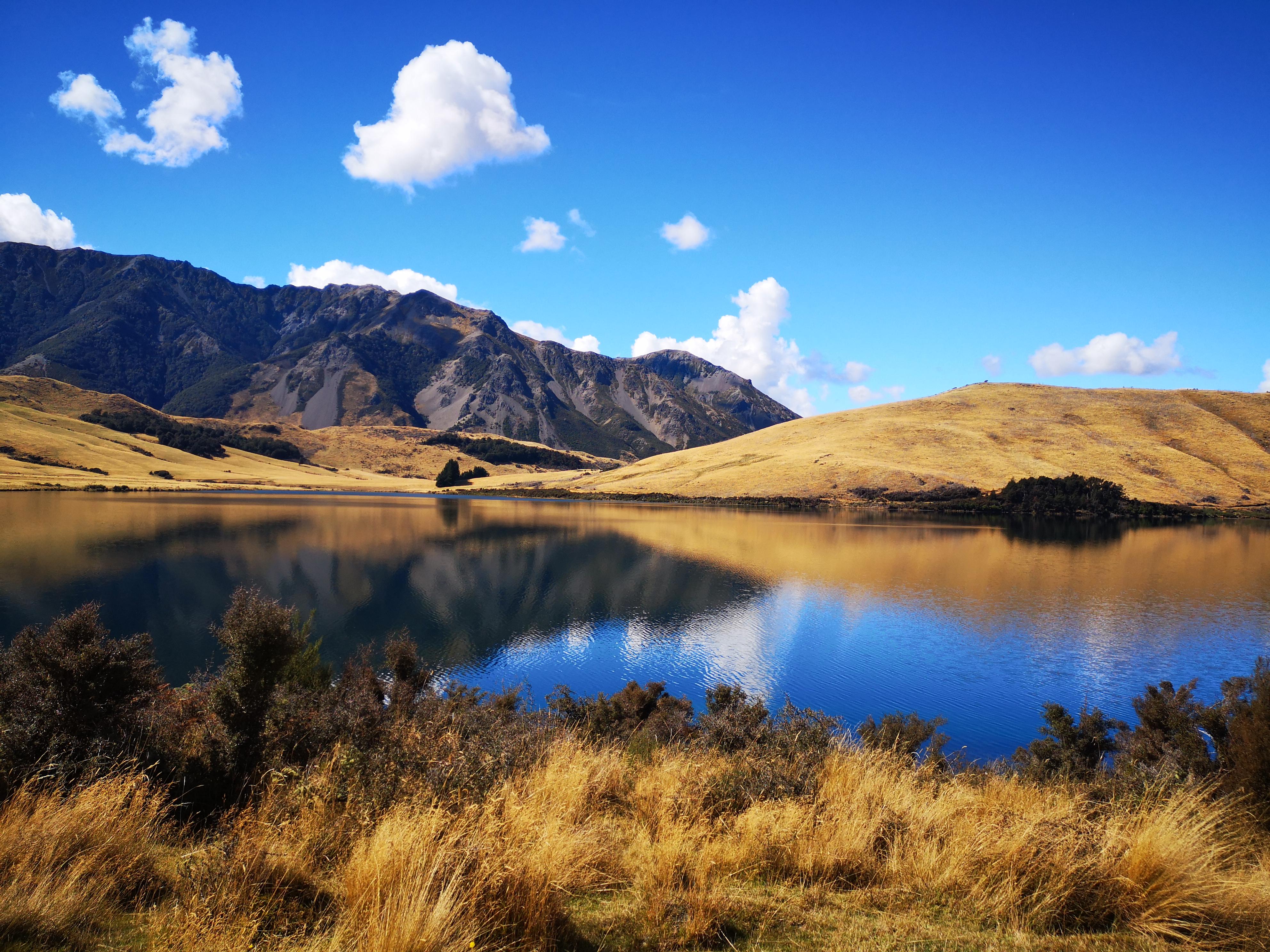 New Zealand Scenic Tours