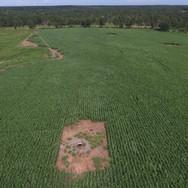 Row Crops Planning.JPG