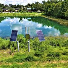 aution Solar Panels at Work