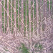 Agri Planting Conservation