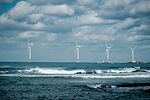 Vietnamese contractor participates in offshore wind power project in the Taiwan Strait