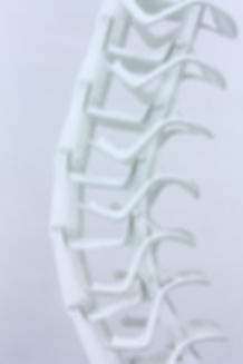 Bert Loeschner, Spine, Monobloc