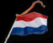 vlag_en_wimpel.png