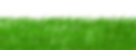 green-1966417_960_720.png
