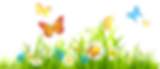flower-3184027_960_720.png