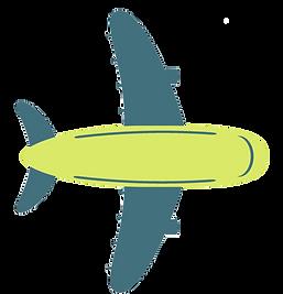 vliegtuig.png