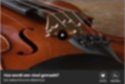 Zo wordt een viool gemaakt.png