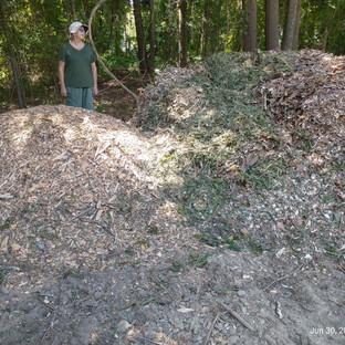 #09 - Mulch Mountain.jpg