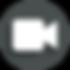 Screen Shot 2020-03-24 at 1.51.42 PM cop