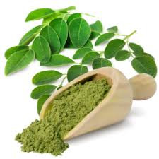 MORINGA : Mother Nature's Gift For Radiant Skin!