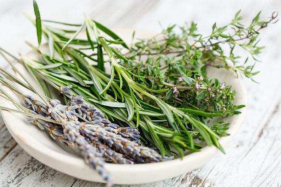 herbs-2523119.jpg