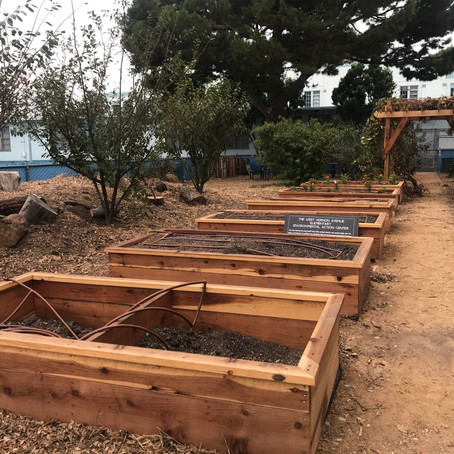 West Vernon Elementary's Garden Undergoes Renovations
