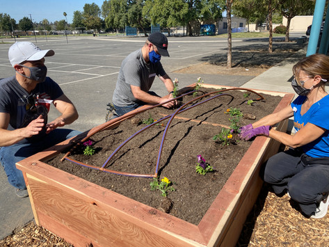 New garden at Broadous Elementary!