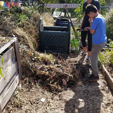 Using the Scientific Method to Recalibrate Compost