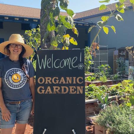 Our Garden Ranger Program goes online!