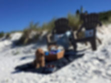 Barefoot at Callala Beach - Pebbles