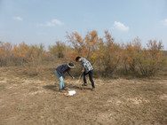 Soil sampling at the grassland of Loess Plateau 2