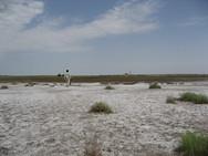 Saline land in Loess Plateau