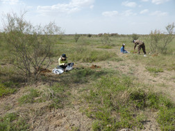Soil sampling at the grassland of Loess Plateau 1