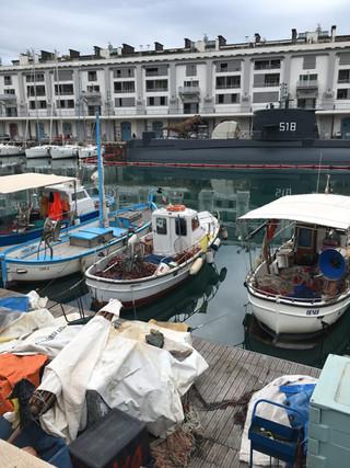 Gènes: du vieux port au port industriel