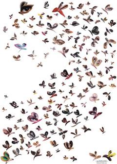150 Papillons 2017