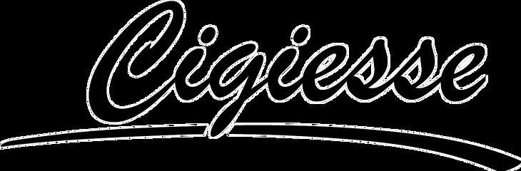 logo cigiesse traspa.png
