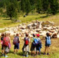 Art&Nature - Chamonix artschool