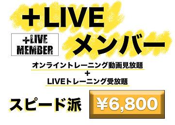 +LIVEメンバー.jpg