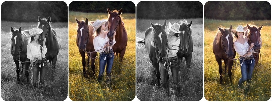 photo shoot with horses