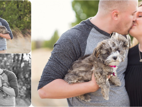 Dog Photography – Spring Session – Photos by Keshia