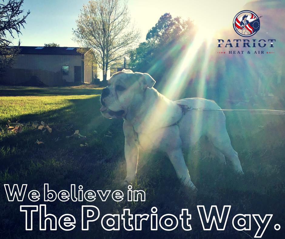 The Patrio Way.png