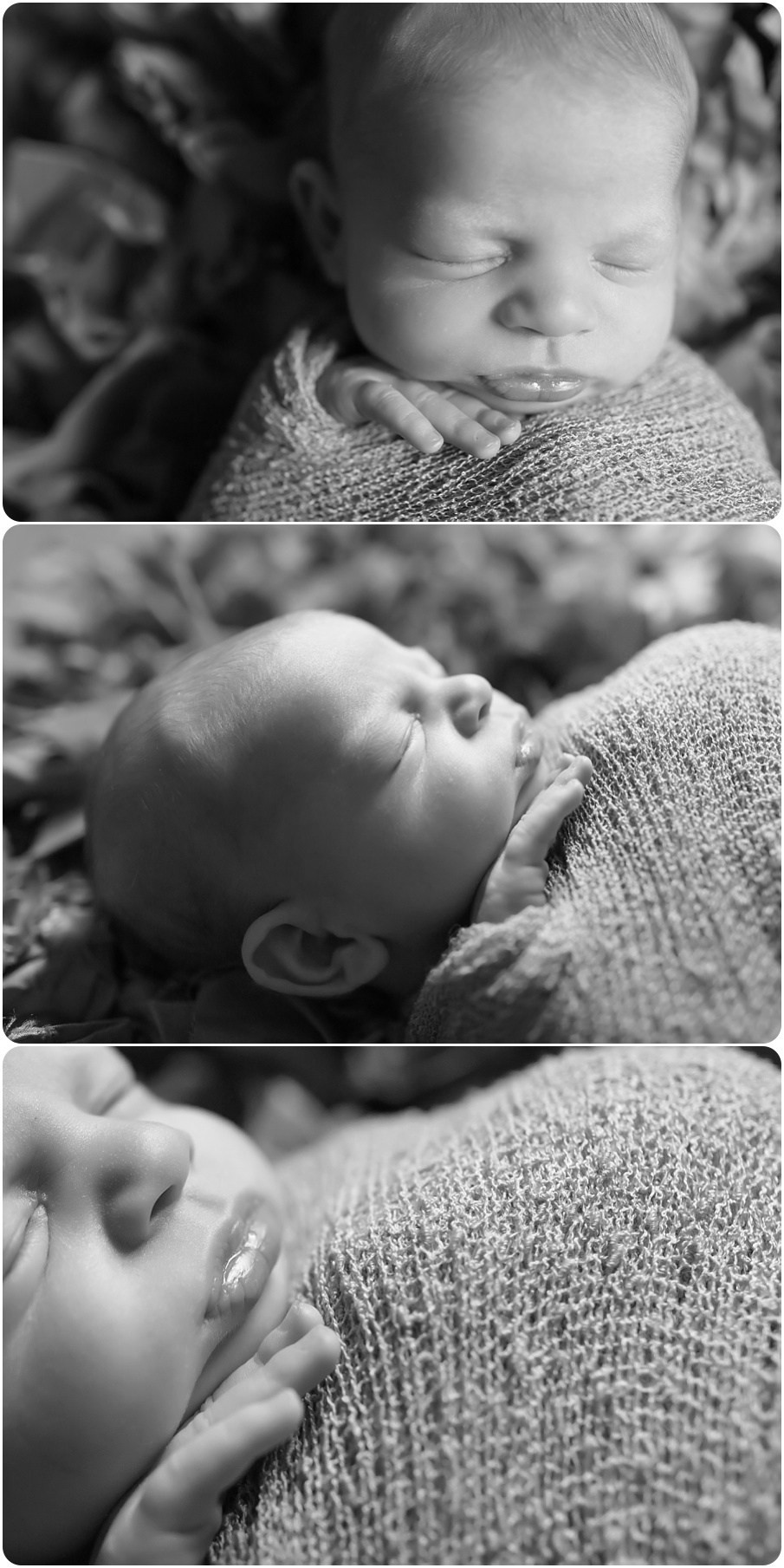 blanchard newborn photographer