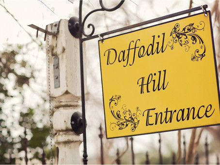 Daffodil Hill Venue – Bethany Wedding Photographer – Photos by Keshia