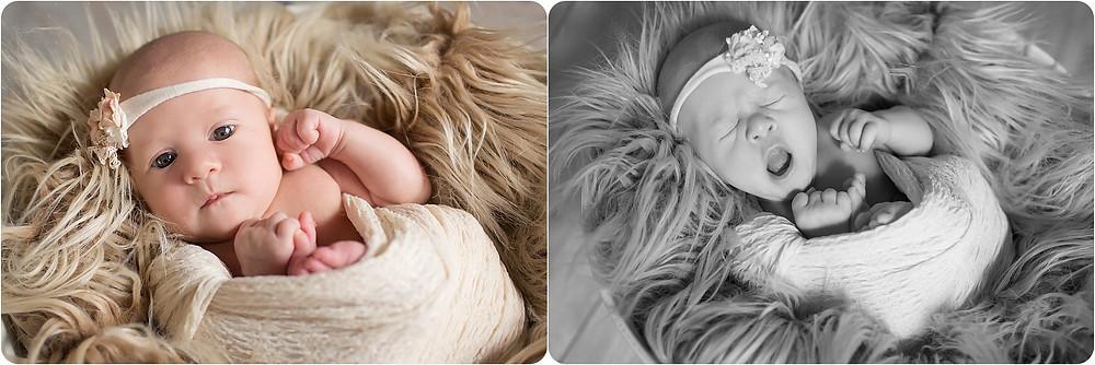 Yukon Newborn Photographer
