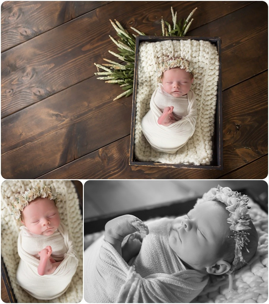 newborn photos yukon