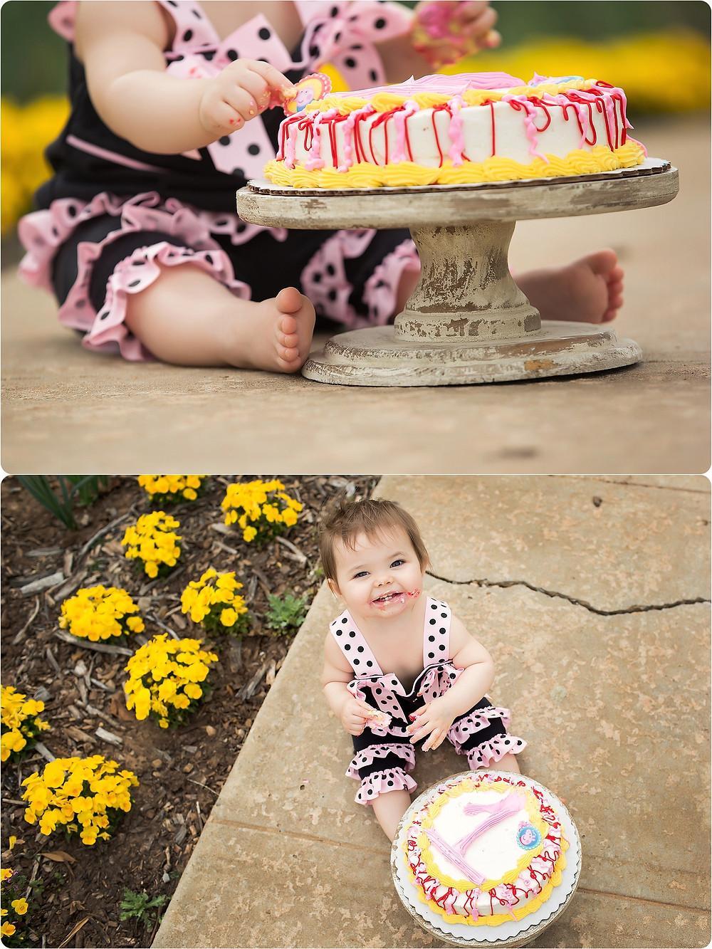 Cake Smash Yukon