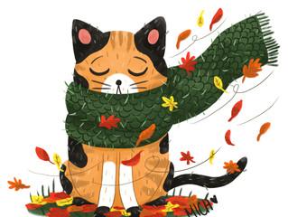 Petit chat d'automne