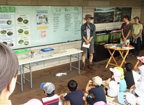 【EVENT】二子玉川ライズで「めだかの池 生きもの調査イベント」を開催しました。