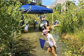 【EVENT】二子玉川ライズで「第3回 めだかの池 生きもの調査イベント」を開催しました。