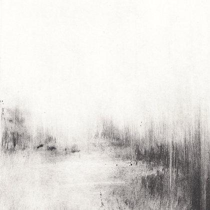 'Serebryany Bor' (Silver Woods)
