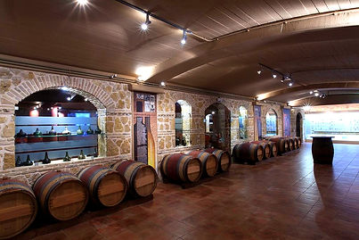 Wine tasting - Athens extreme sports.jpg