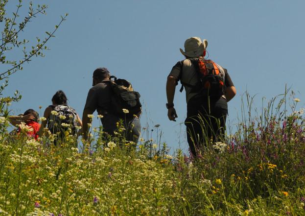 Trekking - Athens extreme sports