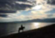 Horse riding on the beach - Athens extre