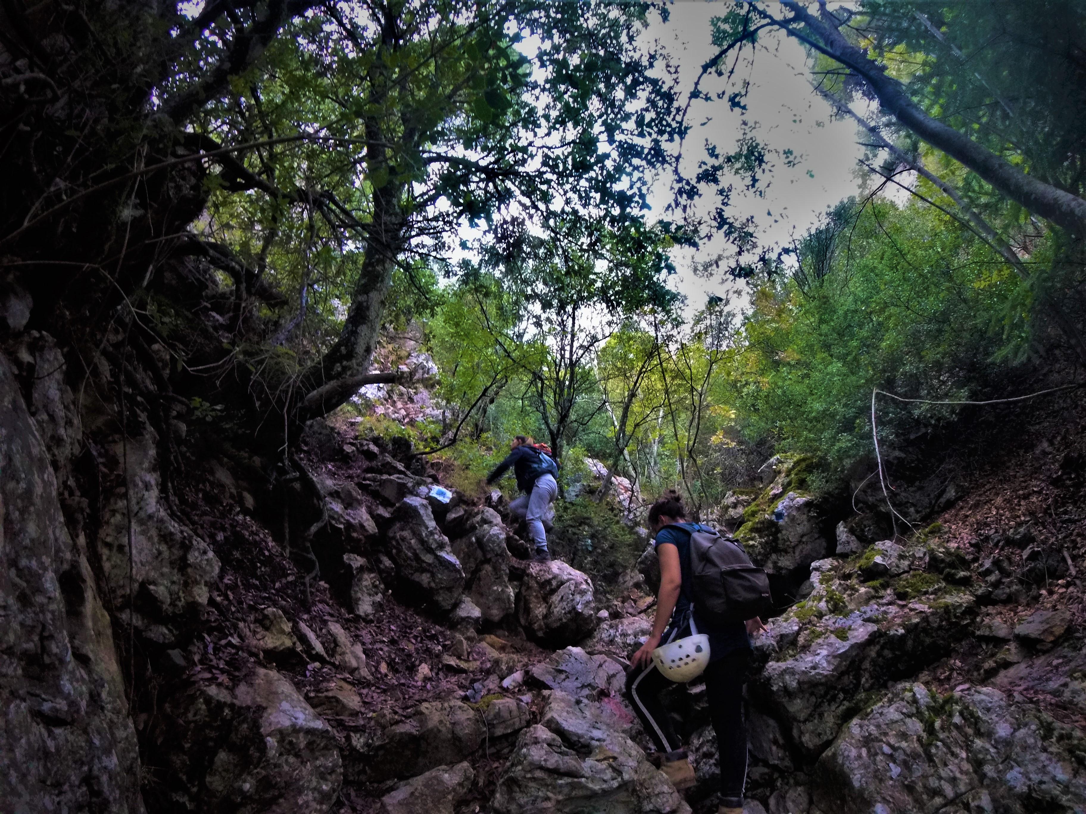 Hiking Parnitha