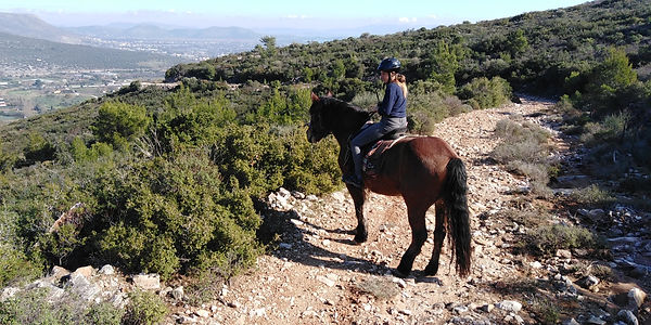 Horse riding at the hill of Marathon - Athens extrem