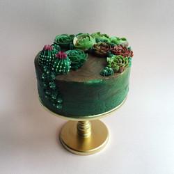 Cactus Birthday Cake